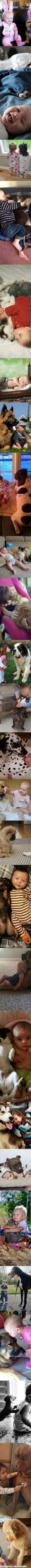 一组图告诉你孩子为什么需要宠物