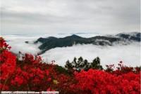 光明宝台山的美景